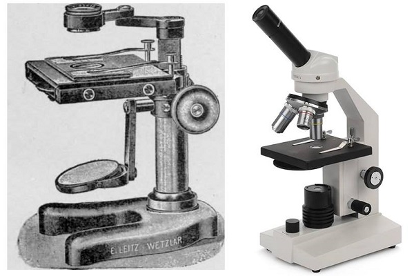 Simple Vs. Compound Microscope